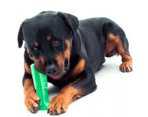 Tandenborstel voor honden